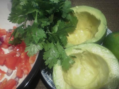Coentro fresco, tomate, cebola, abacate e limão... hummm